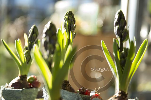 stageart030214_013