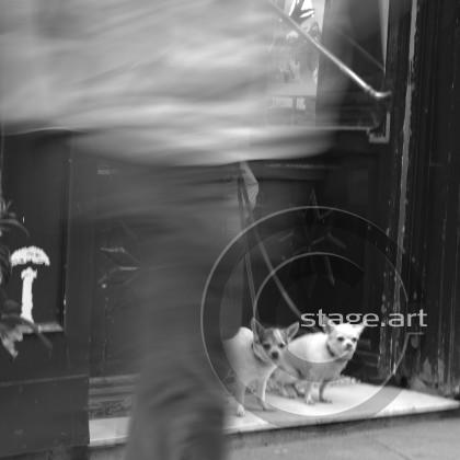 stageart140314_013