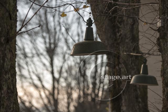 LAMPEN IM HERBST